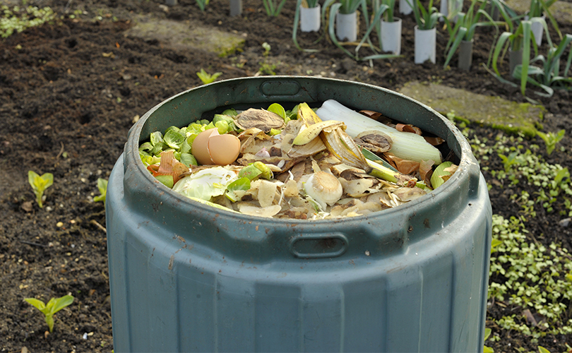 What can be composted